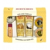 Burt's Bees Tips and Toes Kit 6 travel sizes