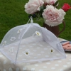 Gisela Graham pop-up daisy netting food cover