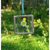 Tiny Nkuku Kiko Hanging Picture Frame - brass