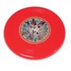Seaside plastic frisbee